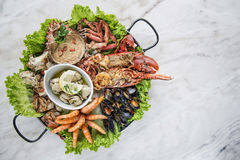 Mixed fresh seafood selection gourmet set platter meal on table Stock Images