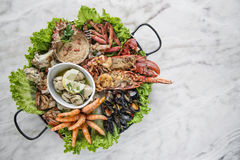 Mixed fresh seafood selection gourmet set platter meal on table Royalty Free Stock Images