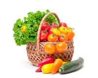 Mixed Fresh Vegetables in Basket Stock Photography