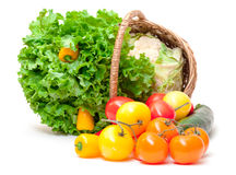Mixed Fresh Vegetables in Basket Royalty Free Stock Images