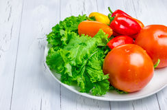 Mixed fresh vegetables on the white plate. Closeup Stock Images