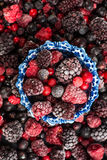 Mixed frozen berries fruits Stock Photography