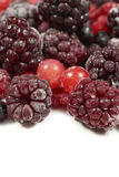 Mixed frozen berry fruits on white Stock Photos