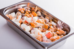 Mixed frozen seefood. Mixed frozen seafood in chafing-dish Royalty Free Stock Image