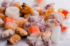 Mixed frozen seefood. Mixed frozen seafood on white background, closeup Stock Photography
