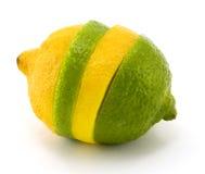 Mixed Fruit stock photo
