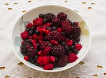 Mixed fruit berries defrosting in a bone china breakfast dish Royalty Free Stock Photography