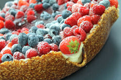 Mixed fruit of the forest cake royalty free stock images