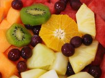 Mixed Fruit Salad. Colorful tropical fruit salad with ripe kiwi, orange slice, pineapple, watermelon and grapes Royalty Free Stock Image