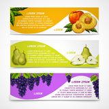 Mixed fruits banners collection Royalty Free Stock Photos