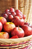 Mixed fruits in the basket. Apples and grapes in the basket Royalty Free Stock Photography