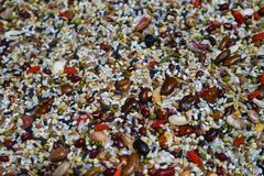 Mixed grain. This is a picture of miscellaneous grains, mixed with a variety of cereals to make the picture vivid royalty free stock photos
