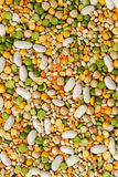 Mixed grains and beans Royalty Free Stock Photos