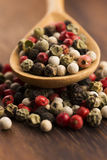 Mixed green, red, white and black peppercorns Stock Photos