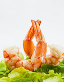 Mixed green salad with shrimps Stock Images