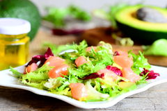 Mixed green salad with smoked salmon and avocado and dressing with olive oil and lemon juice. Vegetarian and quick salad Royalty Free Stock Photos
