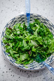 Mixed greens salad Royalty Free Stock Images