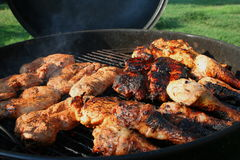 Mixed grill 8 Royaltyfri Foto