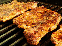 Mixed grilled meats Royalty Free Stock Photos