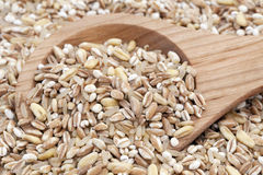 Mixed Healthy Grains Stock Images