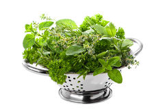 Mixed Herbs Stock Photos
