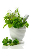 Mixed Herbs Stock Photo