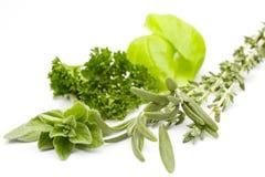 Mixed Herbs Royalty Free Stock Photos