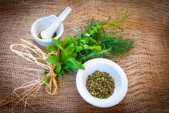 Mixed herbs and green pepper. Fresh mixed herbs - dill, cilantro, mint, basil, tarragon and rosemary with dried green peppers and mortar on a burlap background Stock Images