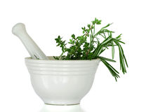 Mixed Herbs, Rosemary and Thyme Stock Image