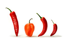 Mixed Hot Chillies Panorama Stock Photos