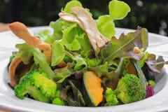 Mixed Hydroponics Vegetable Salad Royalty Free Stock Photo