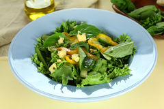 Mixed Leaf Salad Royalty Free Stock Photo