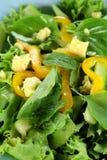 Mixed Leaf Salad Stock Photo