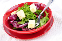 Mixed leaf salad with fresh cheese Stock Photos