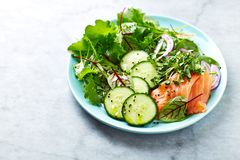 Mixed leaf salad with smoked salmon, spinach, cucumber, red onion, herbs and black kumin. Healthy diet. Low carb meal. Paleo. Copy space royalty free stock images