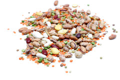 Mixed Legumes Stock Images