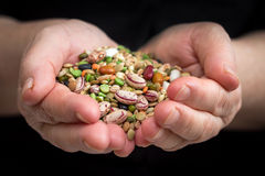 Mixed legumes and cereals Royalty Free Stock Photography