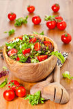 Mixed lettuce salad and tomatoes Royalty Free Stock Images