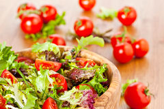 Mixed lettuce salad and tomatoes Stock Images