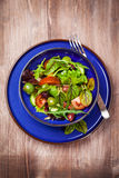 Mixed low calorie salad Royalty Free Stock Photo