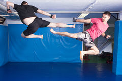 Mixed martial art aerial combat Royalty Free Stock Images