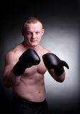 Mixed martial artist Stock Photography