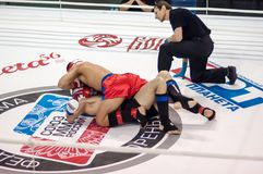 Mixed Martial Arts. Royalty Free Stock Photos