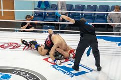 Mixed Martial Arts. Royalty Free Stock Image
