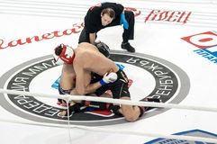 Mixed Martial Arts. Royalty Free Stock Images