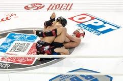 Mixed Martial Arts. Stock Image