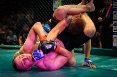 Mixed Martial Arts Stock Images