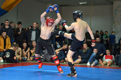 Mixed Martial Arts in Dnipropetrovsk Stock Photo