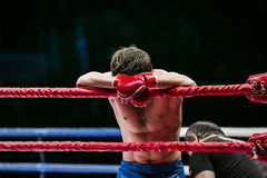 Mixed martial arts fighter (MMA) stands in corner ring royalty free stock photography