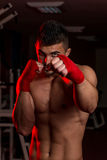 Mixed Martial Arts Fighter Ready To Fight Stock Photography